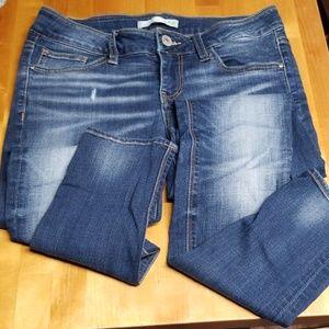Daytrip Lynx Skinny Jean, Size 4/27